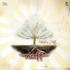 Download Naff - Tak Seindah Cinta Yang Semestinya
