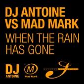When the Rain Has Gone (Remixes)