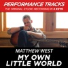 My Own Little World (Performance Tracks) - EP, Matthew West