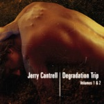Jerry Cantrell - Hurts Don't It?