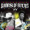 Muddy Waters & John Lee Hooker - Giants of Blues  artwork