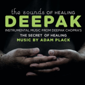 The Sounds of Healing: Instrumental Music from the Secret of Healing Meditations