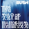 Bush - All My Life