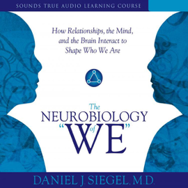 The Neurobiology of 'We': How Relationships, The Mind, And the Brain Interact to Shape Who We Are audiobook