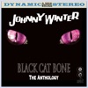 Black Cat Bone: The Anthology ジャケット写真