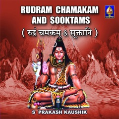 Rudram Chamakam And Sooktams