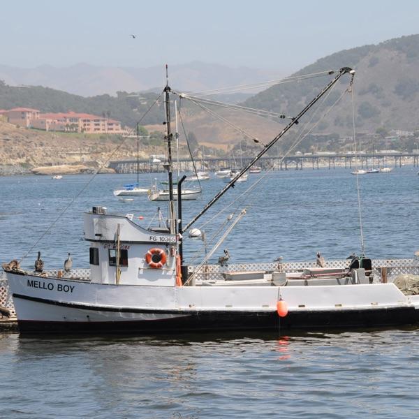 ESRM 462 - Coastal & Marine Management