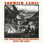 Sopwith Camel - Fazon