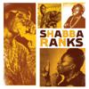 Shabba Ranks - Turn It Down (feat. Home T & Cocoa T) artwork