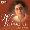 Visions Vol 1