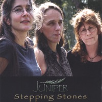 Stepping Stones by Juniper on Apple Music