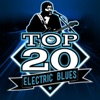 Top 20 Electric Blues