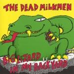 The Dead Milkmen - Beach Song