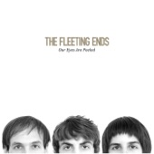 The Fleeting Ends - Sing, Groupie