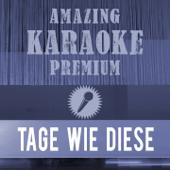 [Download] Tage wie diese (Premium Karaoke Version) [Originally Performed By Die Toten Hosen] MP3