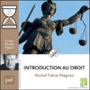 """Introduction au droit en 1 heure: Collection """"Que sais-je?"""" - Muriel Fabre-Magnan"""