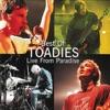 Toadies - Backslider  Live