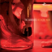 The Bamboos - The Wilhelm Scream (feat. Megan Washington)