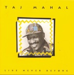 Taj Mahal - Scattered