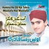 Aamna Ke Dil Ka Tukra Mustafa Hai Mustafa Islamic Naats