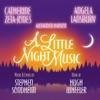 A Little Night Music 2009 Broadway Revival Cast