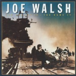 Joe Walsh - Space Age Whiz Kids