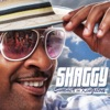 Summer in Kingston (Lava Edition), Shaggy