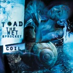 Toad the Wet Sprocket - Crazy Life