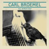 Carl Broemel - All Birds Say Album