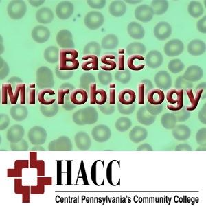 BIOL 100: Basic Microbiology