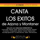 Canta Los Exitos De Arjona y Montaner - Las Versiones Karaoke