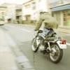 冬の翼 - EP ジャケット写真