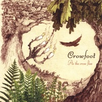 As the Crow Flies by Crowfoot on Apple Music