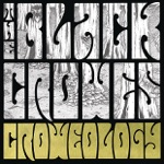 The Black Crowes - Soul Singing