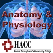 BIOL 121: Anatomy & Physiology I by Harrisburg Area Community ...