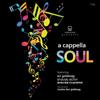 A Cappella Soul - Ari Goldwag