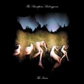 The Amorphous Androgynous - Elysian Feels