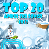 Top 20 Apres Ski Songs 2013