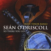 Sean O'Driscoll - The Dear Irish Boy, Air