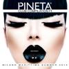 Pineta Club Compilation # 1 - Artisti Vari