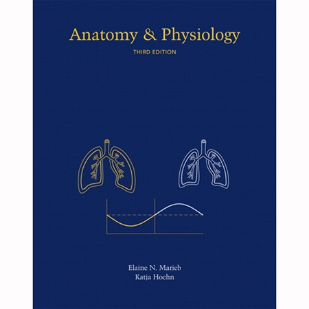 VangoNotes For Anatomy Physiology 3 E Topics 1 13