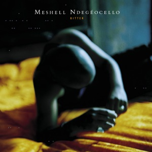Meshell Ndegeocello - Eve