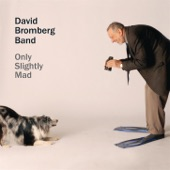 David Bromberg - You've Got to Mean It Too