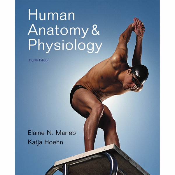 Vangonotes For Human Anatomy Physiology 8e By Elaine N Marieb