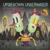 Upsidedown Underwater