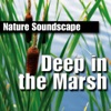 Deep In the Marsh Nature Sounds Only