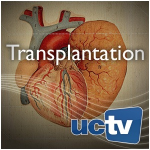Transplantation (Video)