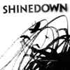 The Sight of Madness, Shinedown
