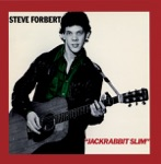 Steve Forbert - Complications