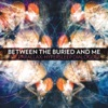The Parallax: Hypersleep Dialogues - EP, Between the Buried and Me